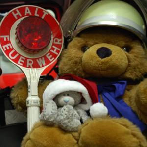 teddy-kelle2014